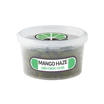 mango-haze-kush-marihuana
