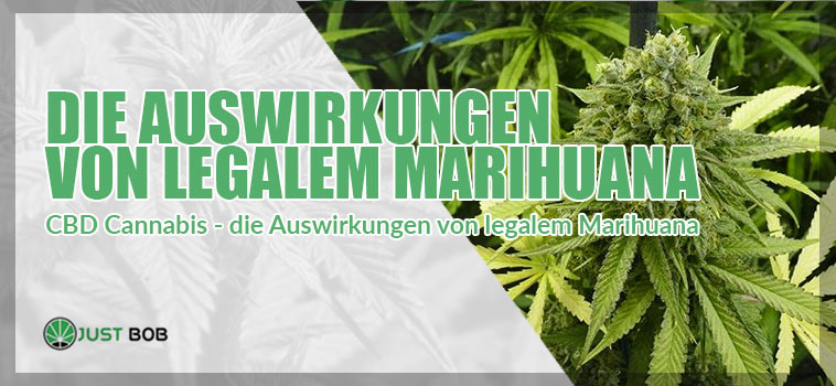 CBD Cannabis - die Auswirkungen von legalem Marihuana