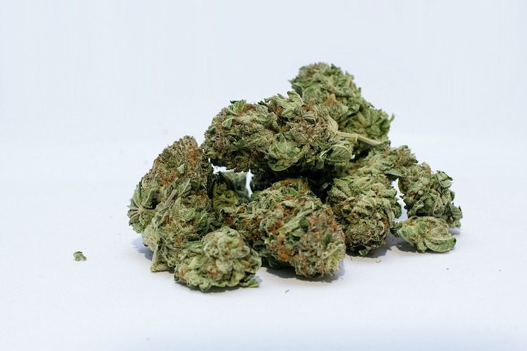 die besten Arten von Cannabis