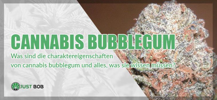 cannabis bubblegum