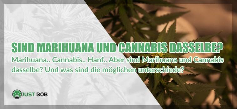 Marihuana und leichtes Cannabis