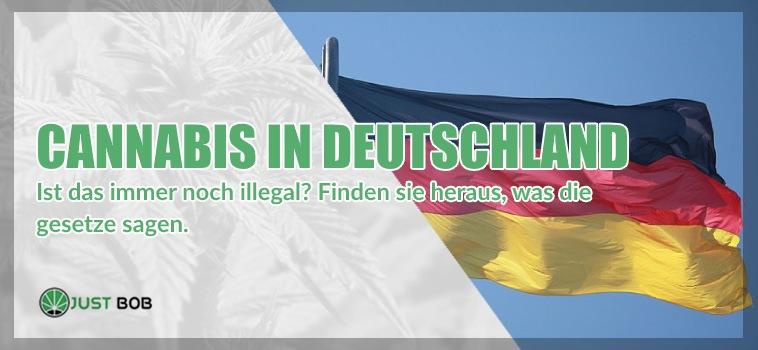 legalen Cannabis in Deutschland