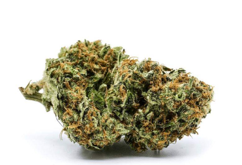 legales white widow marihuana cbd