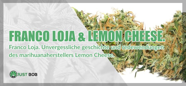 Franco Loja Lemon Cheese cbd