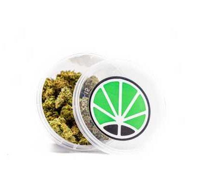 Small Buds Marihuana Indoor