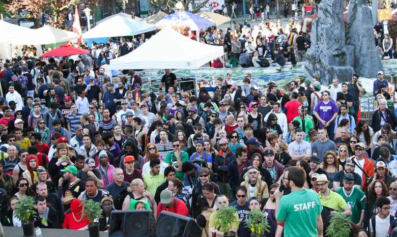 cannabis festival master kush