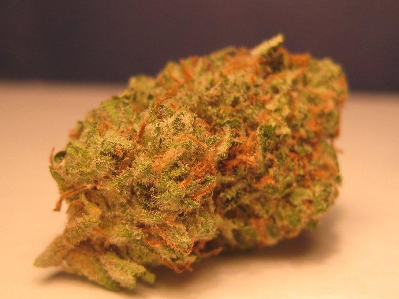 marihuana leicht master kush