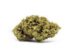 master kush cbd cannabis bluten