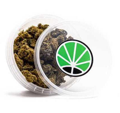 melon kush weed cbd cannabis bluten