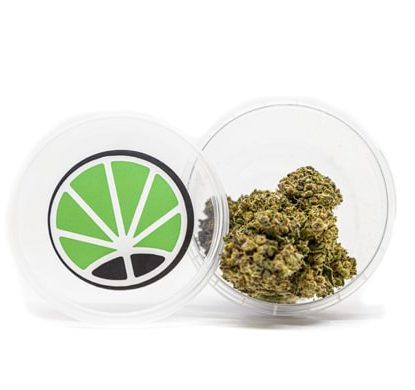 gorilla glue cbd marijuana
