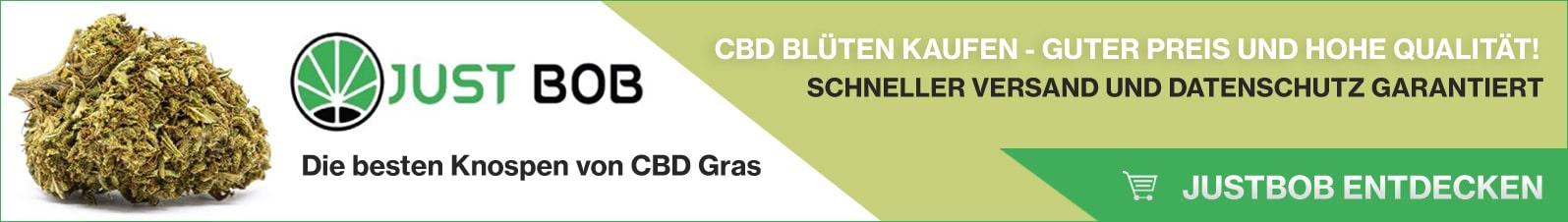 Banner Justbob CBD blüten kaufen