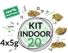 Mix gras cbd kit indoor